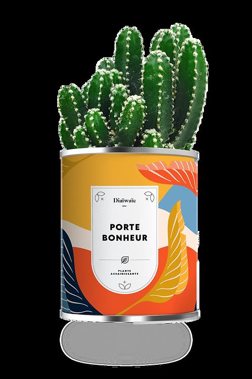 PORTE BONHEUR - CACTUS