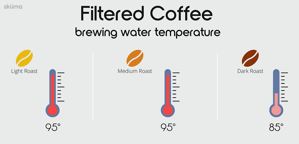 Filtred coffee brewing water temperature