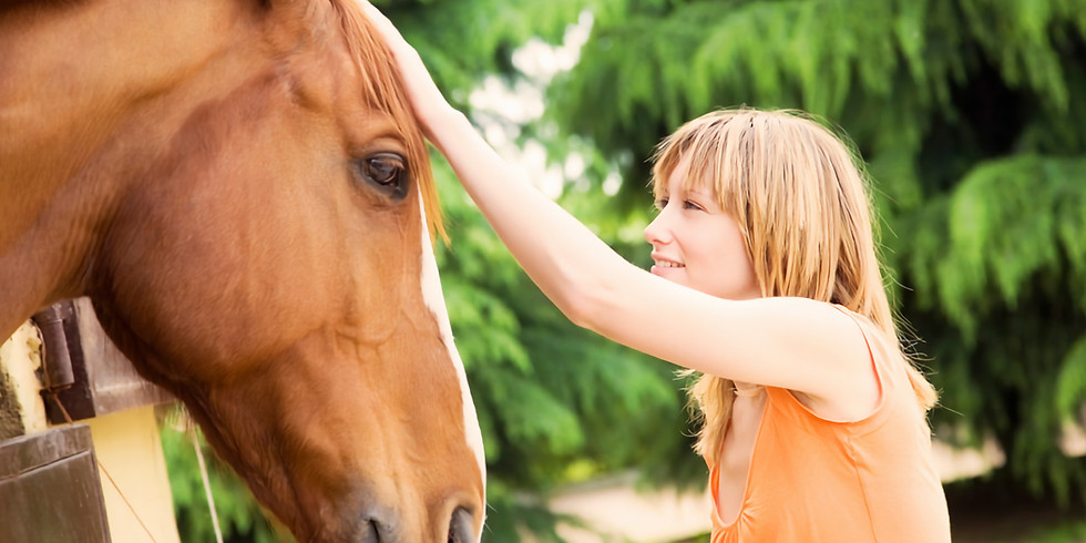 Introduction to Equine Assisted Therapies