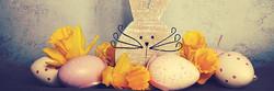 Pasqua a Casa