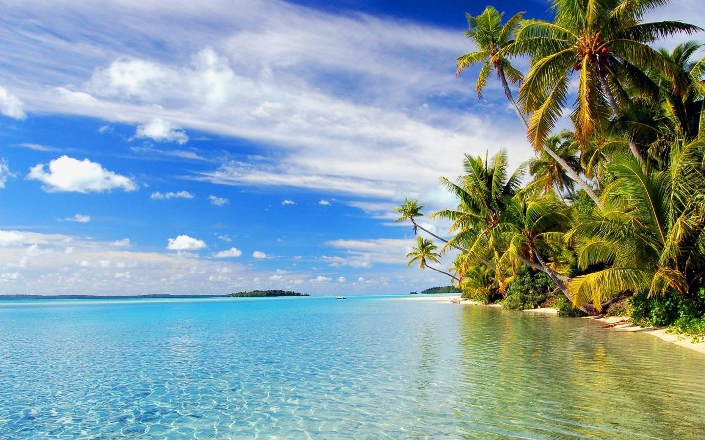paradise-beach-nature-desktop-background
