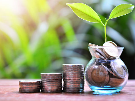 plant money coins saving growth up to profit interest for concept investment mutual fund finance and