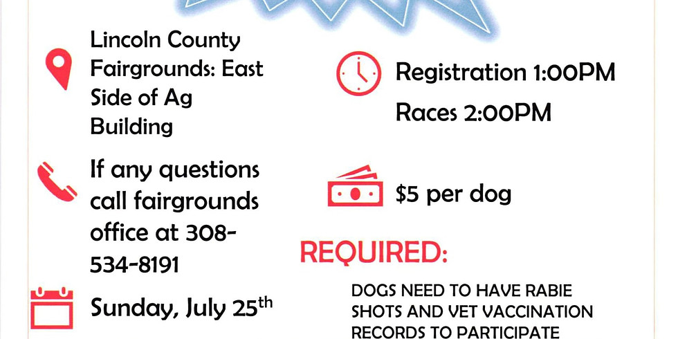 Weiner Dog Races