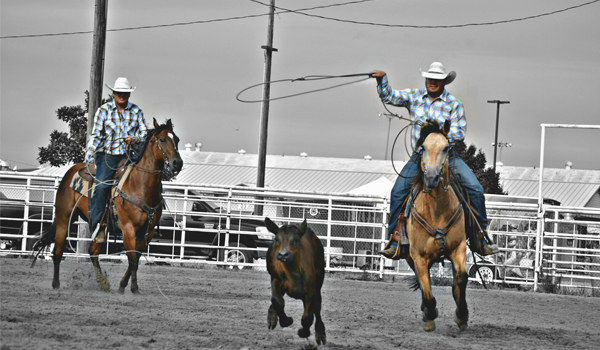 slide 6_ranch rodeo