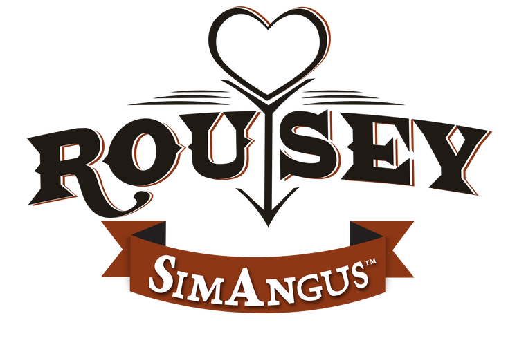 Rousey SimAngus