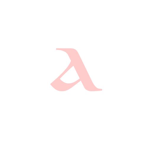 Arabesque Dance Academy - Branding