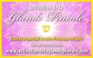 logo-pineal-fr-print.jpg