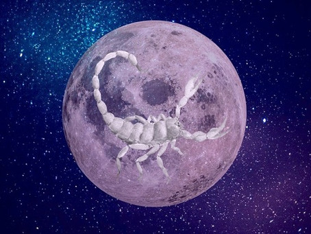 Full Moon in Scorpio | Embodying Your Deepest Passion