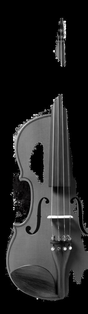 violin%2520splash_edited_edited.png