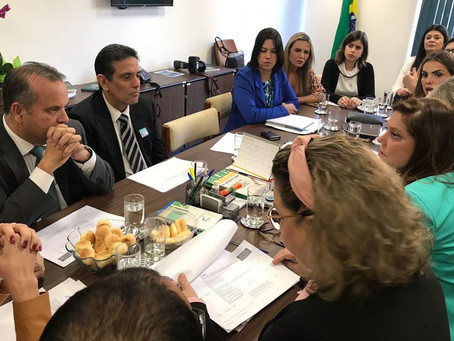Deputada Celina Leão cobra os direitos das mulheres na reforma da previdência