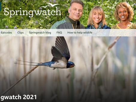 SPRINGWATCH 2021 Broadcasts live from spectacular Alladale Wilderness Reserve
