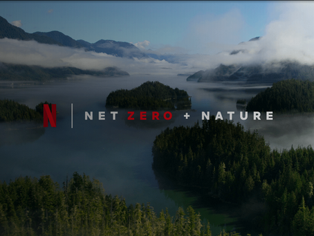 Net Zero + Nature: Their Commitment to the Environment