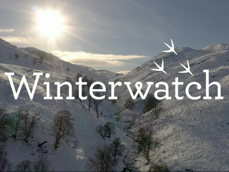 Winterwatch makes TV history as world's first large scale outside broadcast solely powered by green