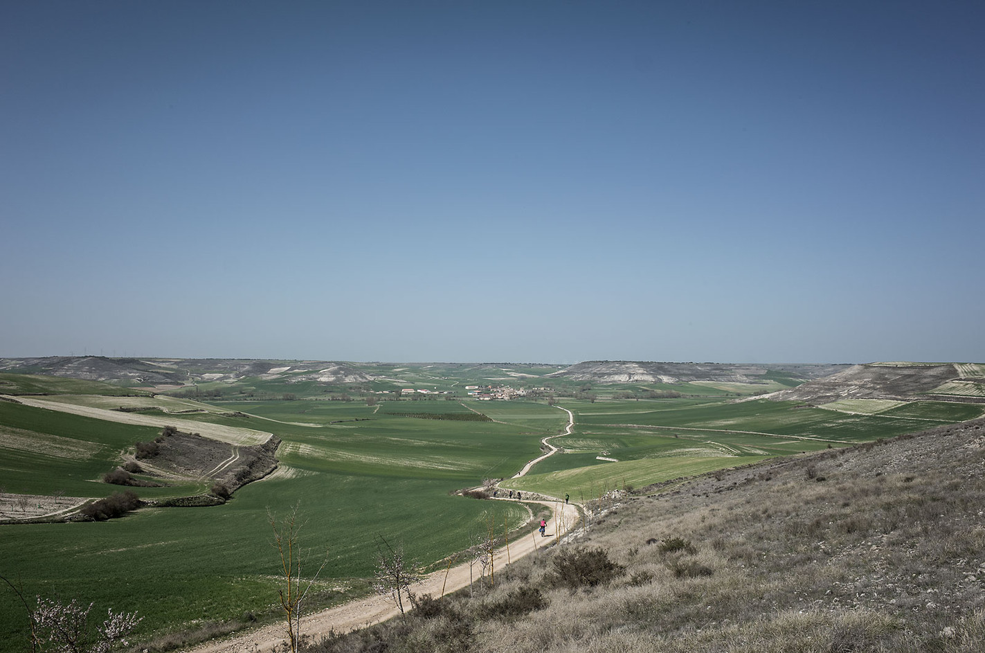 Situated between the wined hills of Rioja in the east to the wet mountains of Galicia in the west is the dry plateau of the Castilla y León, known as the Meseta. Temperatures in the summer can reach over 40C/105F, where the absence of trees offers no relief from the sun.