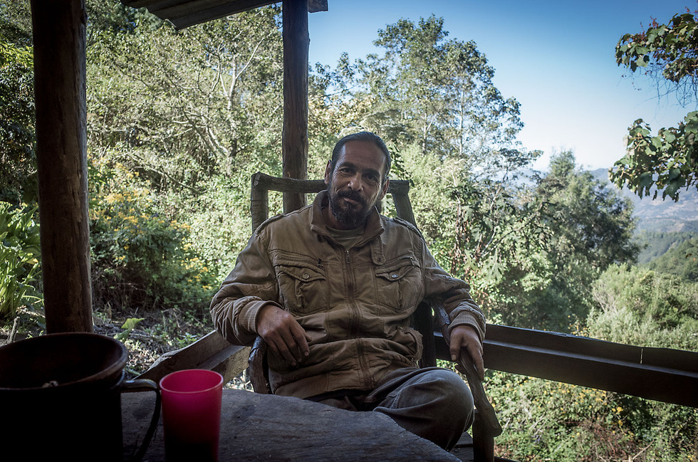 Navarro learned the use of medicinal plants from his grandmother and continues the tradition today via temazcal ceremonies, essentially tea-based steam baths performed in a small clay hut, in the mountains of central Oaxaca.