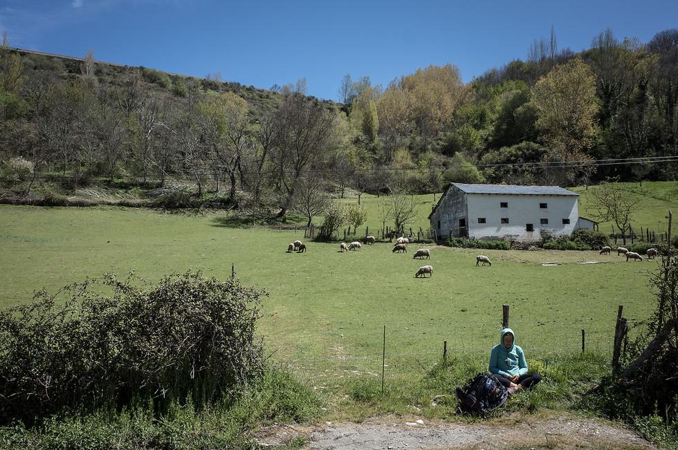 A pilgrim meditates near a small farm outside of Ruitelán.