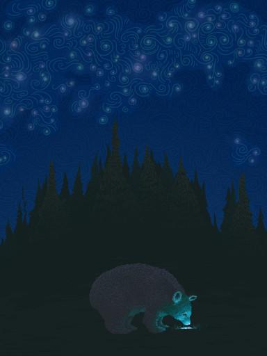 Bear Bernard: Night Sky