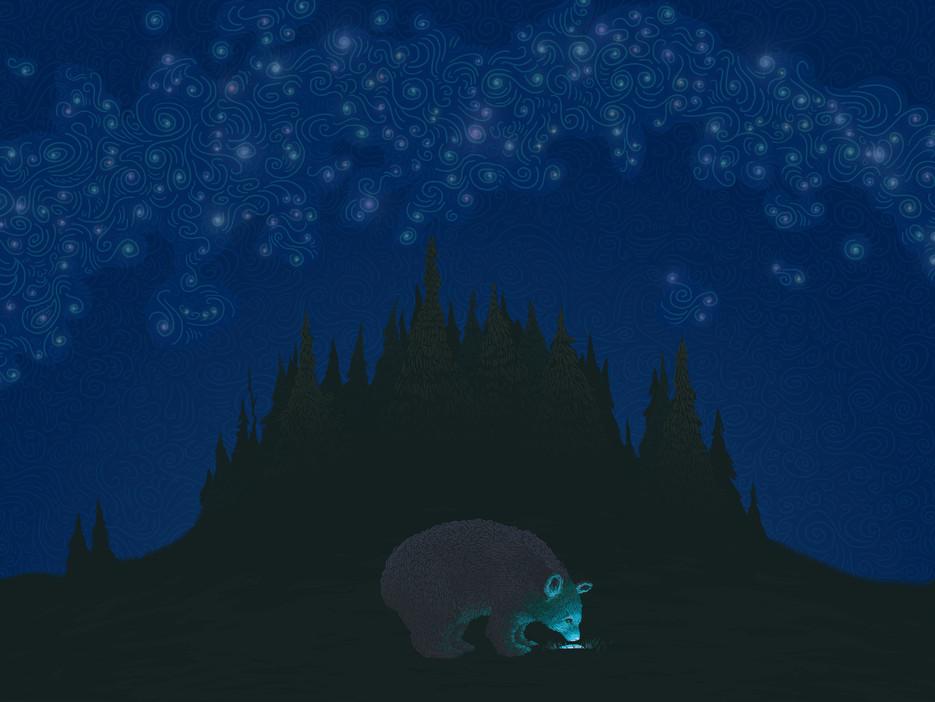 Bear Bernard and the Nine Days' Wonder