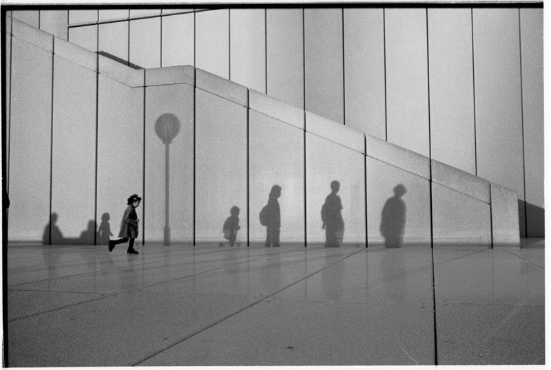 Sydney Shadows - by David Peat