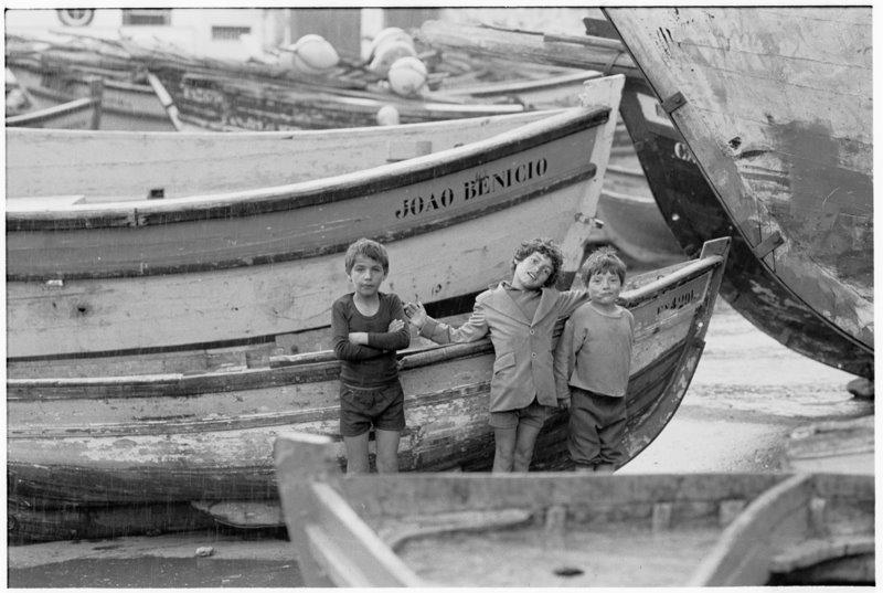 Madeira Boys - by David Peat