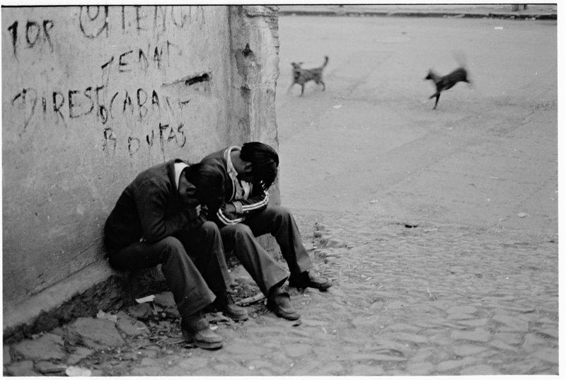 Ecuador Boys & Dogs - by David Peat