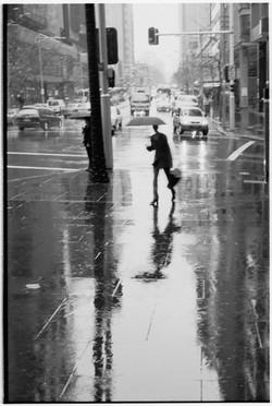 Sydney Rain - by David Peat