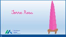 Tela Torre Rosa.png