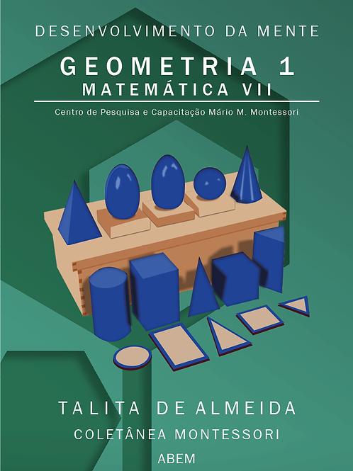 Matemática VII - Geometria 1