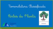 Tela de abertura Partes da Planta.png