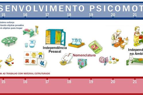 Faixa do Desenvolvimento Psicomotor