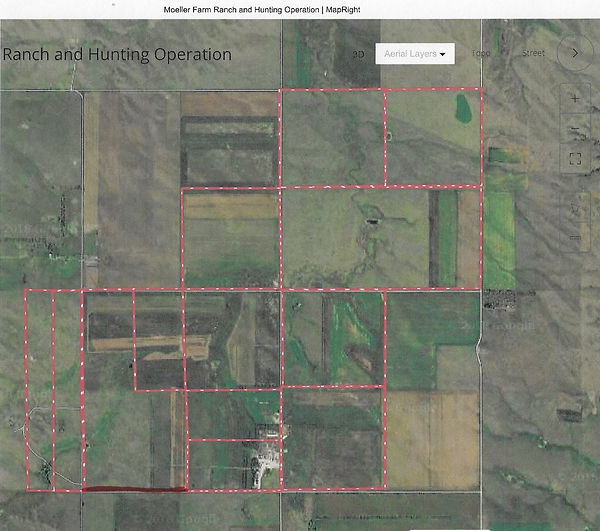 golden triangle pheasant hunting property for sale