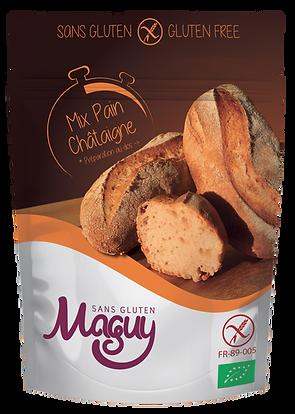 Mix Maguy Sans Gluten Châtaigne