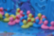 duck-pond-3395156_1920.jpg