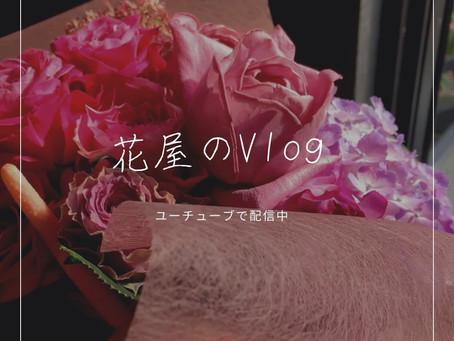 SOWAKAのVlog
