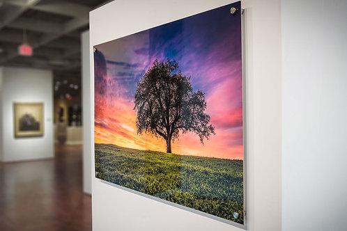 "Acrylic Prints (16"" x 24"")"
