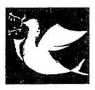 logo in jpeg_edited_edited.jpg