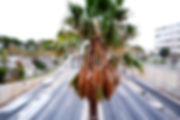DSCF0048_edited.jpg