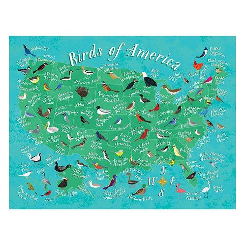 Birds of America Puzzle - 500 pcs