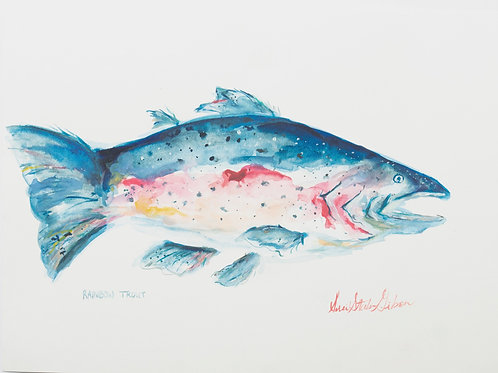 """Rainbow Trout"" - 10 x 14"
