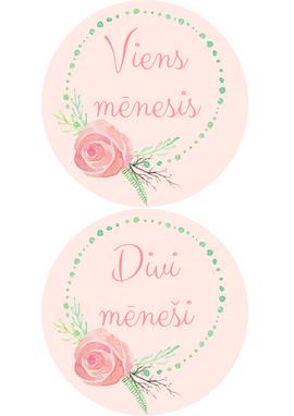 Mazuļu mēnešu kartiņas Romantic Pink