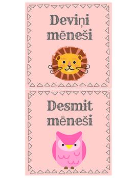 MAZUĻA MĒNEŠU KARTĪTES. Pirmās