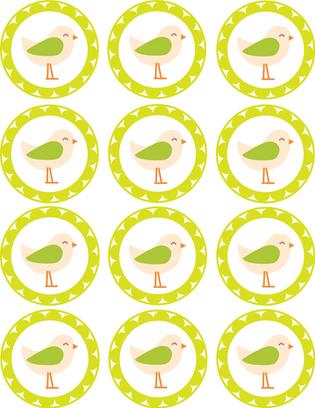"""Kūku/salmiņu dekori """"Birds"""""""