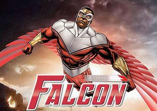 licença do falcon