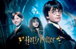 Roupa do Harry Potter - Licensing