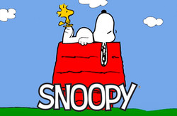 Roupa do Snoopy - Licensing