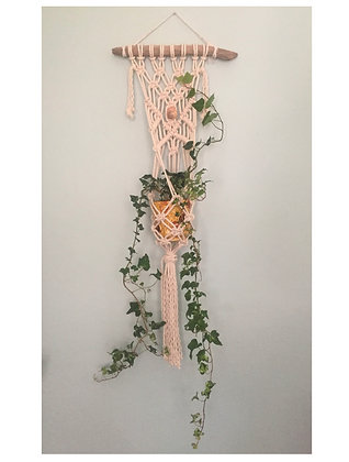 Macrame Wall Hanging with Plant