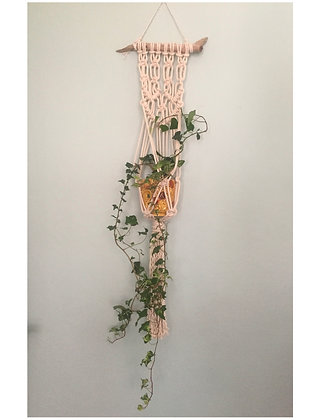 Macrame Plant Hanging for wall Design