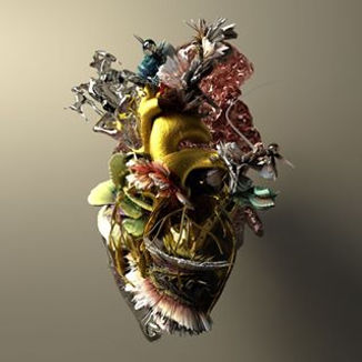 Heart of Gold (album cover) - PANDAGUNDA
