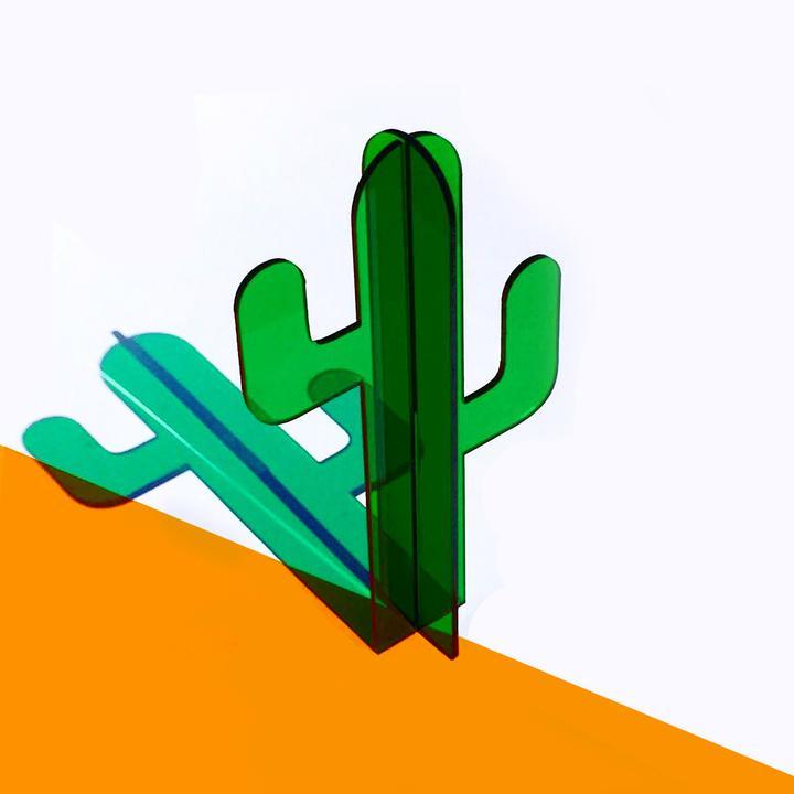 Cactus - NOBEL TRUONG