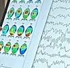 close up gretchen brains_edited.jpg